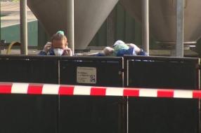 Alle geteste dieren bij nertsenbedrijf Rijkevoort hadden corona: 'We waren er laat bij'