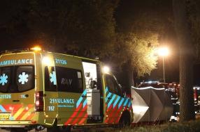 Nieuws: Automobilist (27) overleden na ernstig ongeluk in Mill