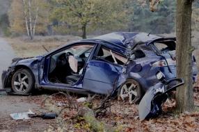 Nieuws: Automobiliste bij Mill rijdt twee bomen uit de grond en raak