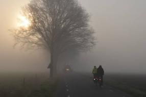 Nieuws: Brabant urenlang plaatselijk geplaagd door dichte mist