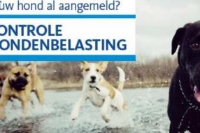 Nieuws: Controle hondenbelasting van start