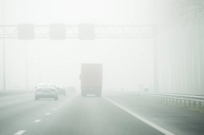 Nieuws: Dichte mist in Brabant: pas snelheid aan en houd afstand