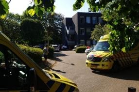 Nieuws: Dodelijke steekpartij Velp: man (51) verdacht van moord