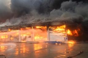 Nieuws: Gebroeders Van Lymborch wil festival redden na verwoestende