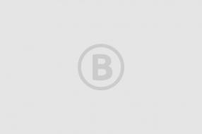 Nieuws: Heemhuus gaat tegen de vlakte in Sint Anthonis: 'Het gemeent