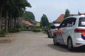 Nieuws: Hond doodgebeten in Stevensbeek