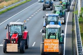 Nieuws: Honderden Brabantse boeren starten dinsdag opnieuw de trekke