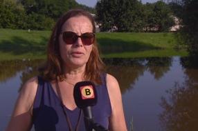 Nieuws: Hoogwater trekt veel bekijks in Boxmeer: 'Ik vind dit maar e