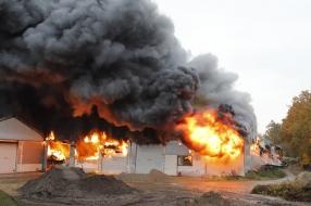Nieuws: Persoonlijk leed na brand Oeffelt: jukeboxen, singletjes en