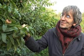 Nieuws: Rimpelroos, klimaugurk, cranberry: populair in voedselbossen