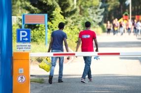 Nieuws: Veel meer incidenten in azc's, vooral in Budel, Oisterwijk e